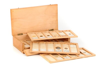 Lot 12-A Collection of 28 Microscope Slides