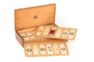 Lot 18-A Collection of 36 Microscope Slides
