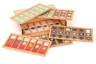 Lot 20-A Collection of 36 Microscope Slides
