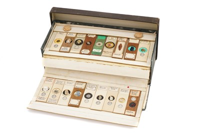 Lot 12-A Very Fine Collection of Dry Mounted Crystal & Geological Microscope Specimen Slides