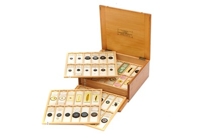 Lot 38-A Fine Entomological Collection of Microscope Slides