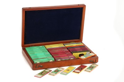 Lot 45-A Fine Collection Of Victorian Opaque Microscope Slides