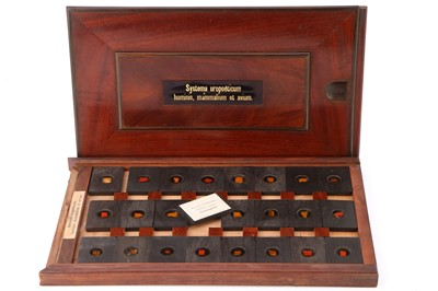 Lot 21-A Cased Set of Hyrtl Microscope Slides