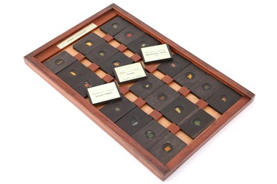 Lot 22-A Cased Set of Hyrtl Microscope Slides