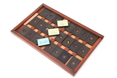 Lot 23-A Cased Set of Hyrtl Microscope Slides